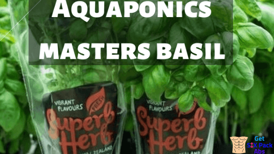 Freeze Dried and Smoked Herbs-Aquaponics Masters